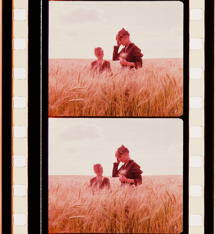 Days of Heaven (1978) | Timeline of Historical Film Colors