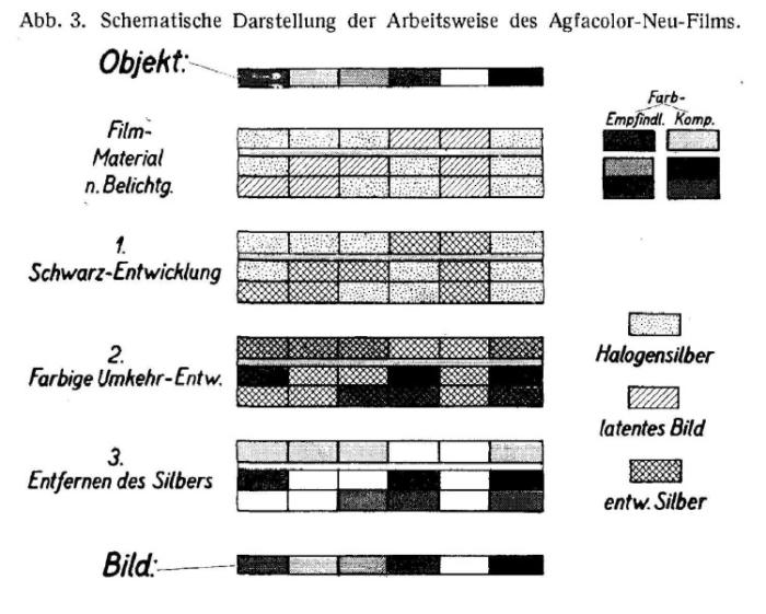 AGFACOLOR_NEU_SchneiderWilmanns_AgfacolorNeu_1937_cropped_conv-2