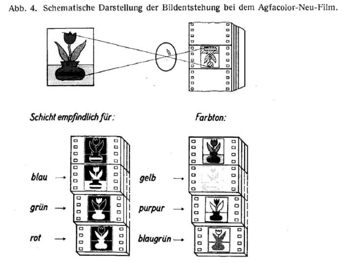 AGFACOLOR_NEU_SchneiderWilmanns_AgfacolorNeu_1937_cropped_conv-3