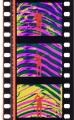 BFI_C-142133_RainbowDance_Gasparcolor_2015_MarkII_IMG_0300