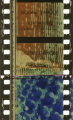 BFI_Kaleidoscope_ID83990_Dufaycolor_SlightlyBlurred_IMG_0016