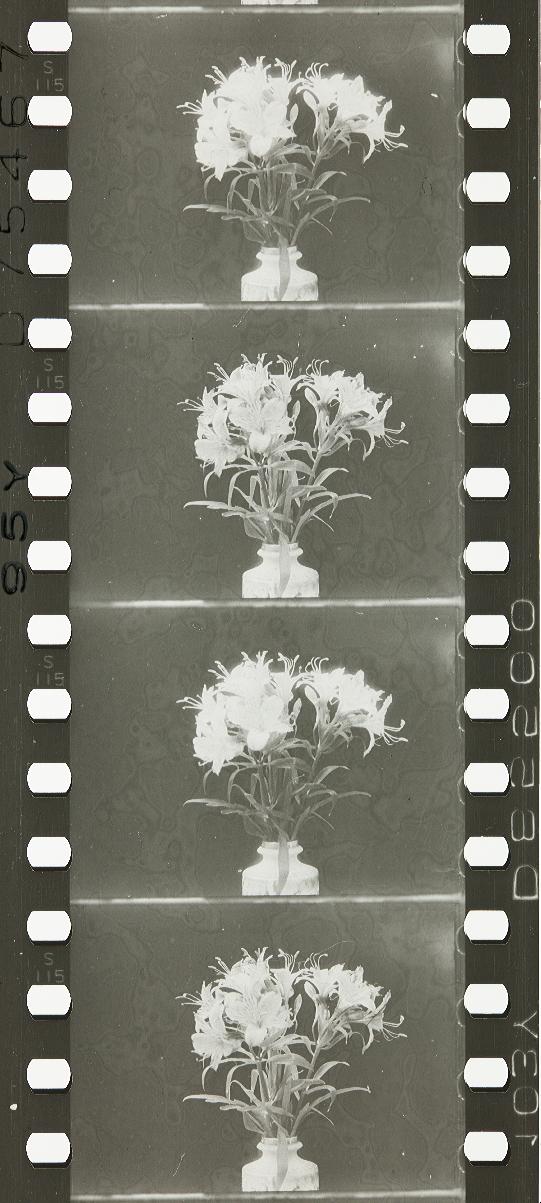 Kinemacolor | Timeline of Historical Film Colors