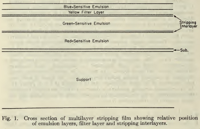 Capstaff_EastmanMultilayerStrippingFilm_KodakStrippingFilm_1950