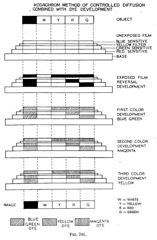 Cornwell-Clyne_Kodachrome reversal_1951-7
