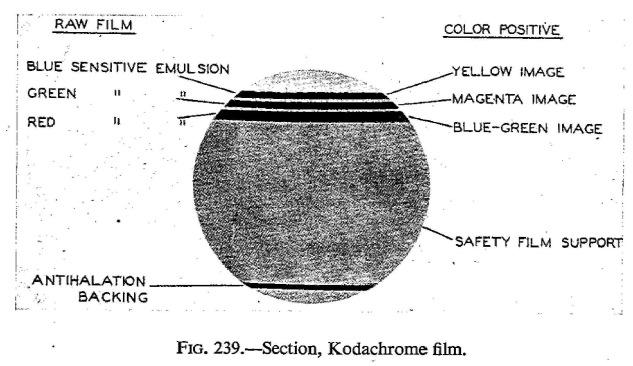 Cornwell-Clyne_Kodachrome reversal_1951