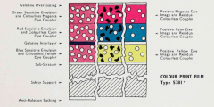 Craig_Eastman-Color_1953-plate-2b