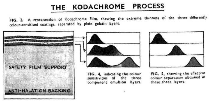 Davies_Kodachrome revearsal_1936-2