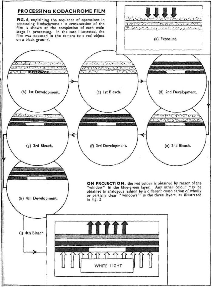Davies_Kodachrome revearsal_1936-4