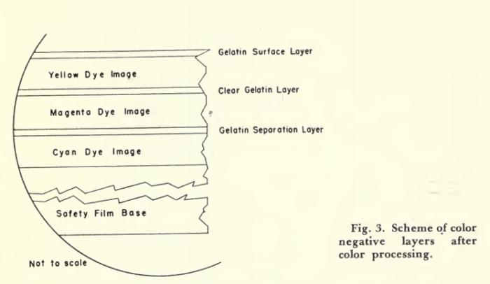 Ansco Color negative / positive process | Timeline of Historical