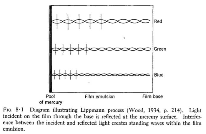 Evans_Lippmann_secondary_1953_1