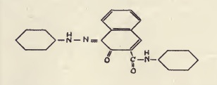 Friedman_Gaspar_Formula-6