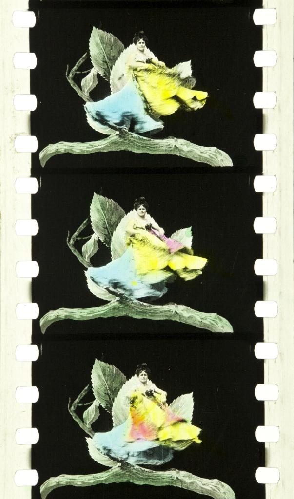 Métamorphoses Du Papillon (1904) | Timeline Of Historical Film Colors