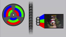 LeeTurner_VideoDoc