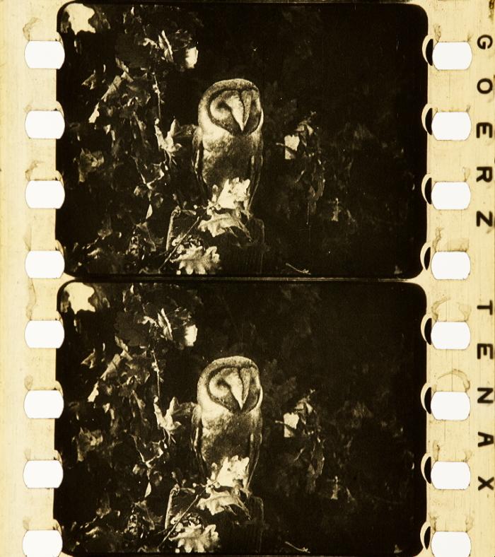 [Gaumont Woche] [1926].