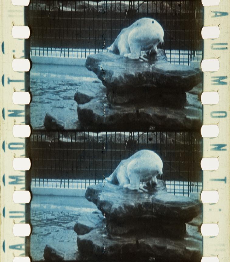rencontre sexe chatte poilue haut-rhin
