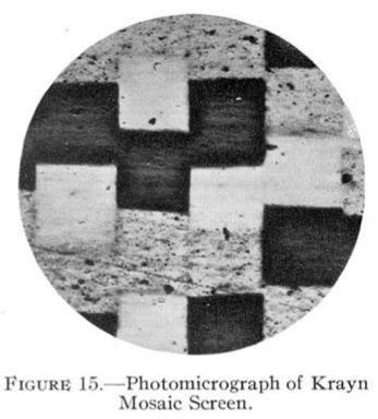 Mees_Krayn_1928