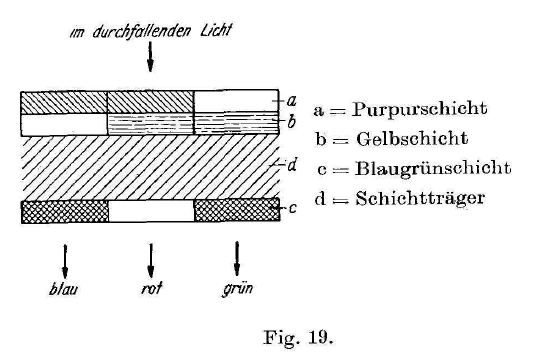 Meyer_Gasparcolor_1940-2