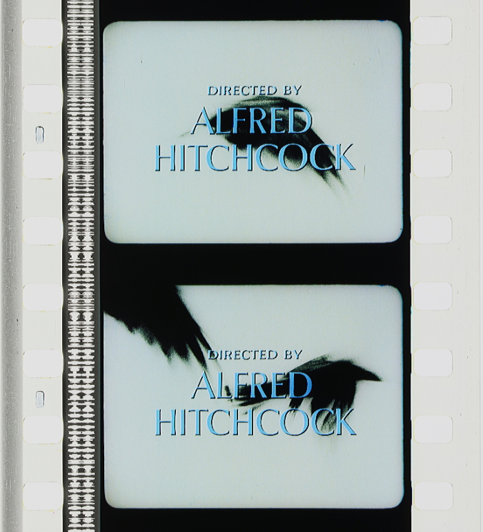The Birds 1963 Timeline Of Historical Film Colors