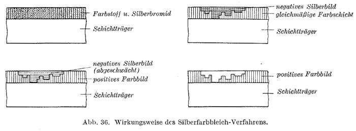 Schultze_Silver dye-bleach_1953-1