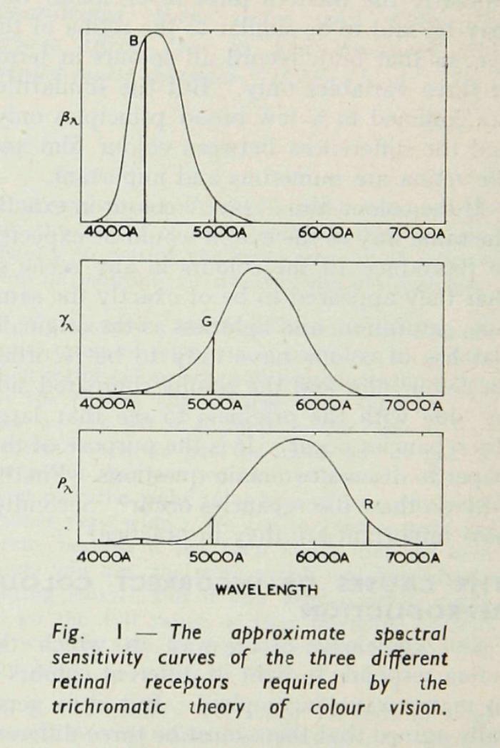Hunt_Subtractive_1951-1