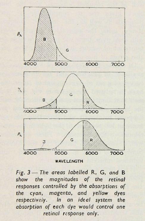 Hunt_Subtractive_1951-3