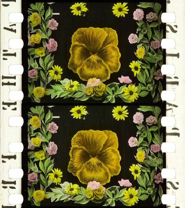 La Fée Aux Fleurs 1905 Timeline Of Historical Film Colors