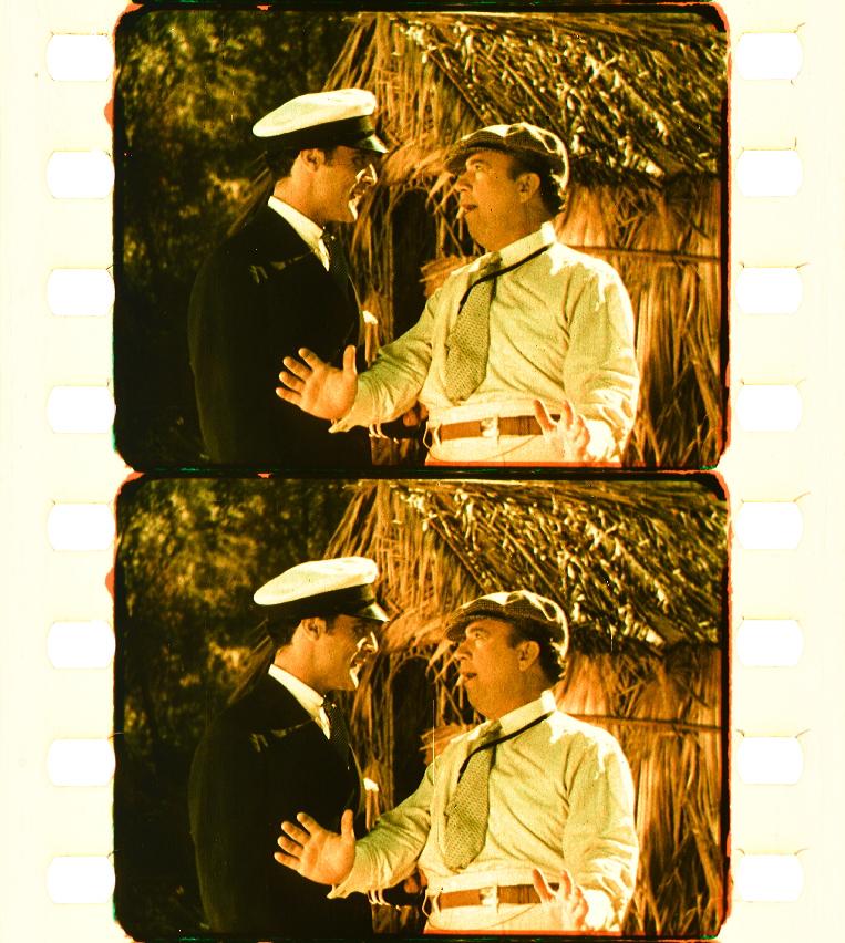 a02f4cf9ae74 The Love Charm (1928)