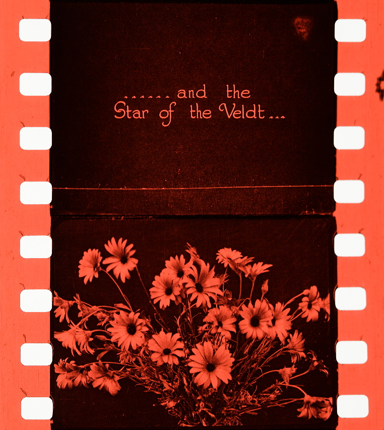 Flowers of London (1924) | Timeline of Historical Film Colors