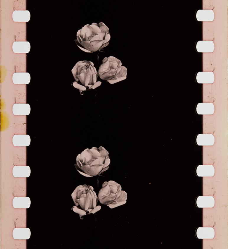 Shades of grey film erscheinung