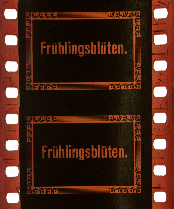 Printemps fleuri (1912) | Timeline of Historical Film Colors