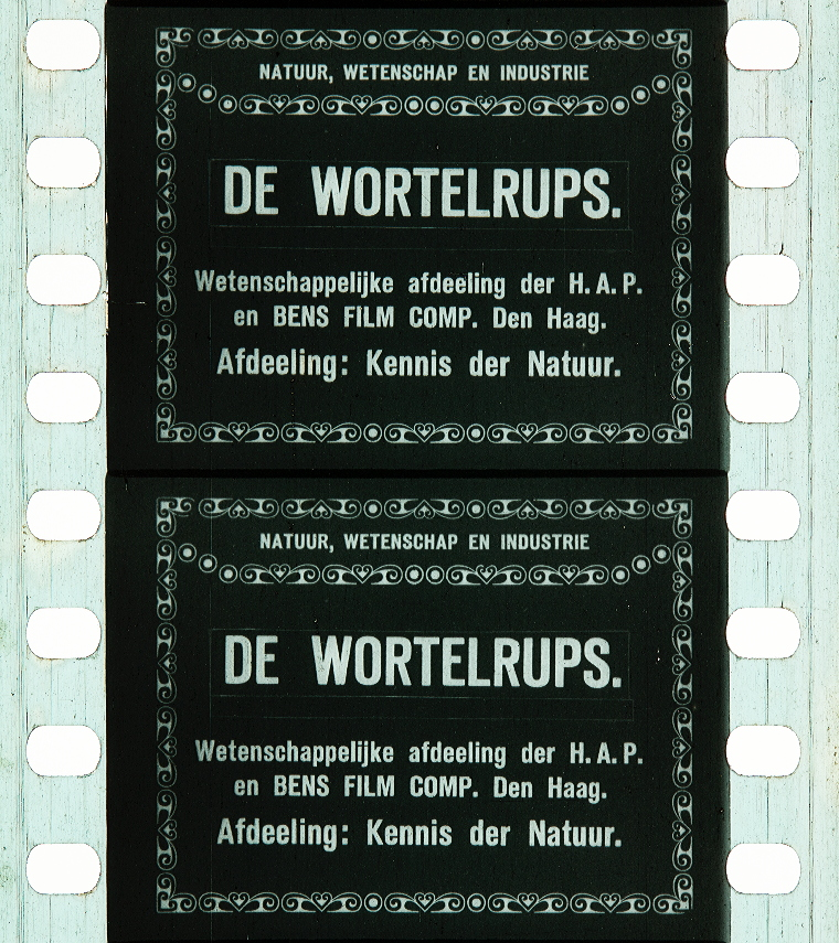 La Chenille De Carotte 1911 Timeline Of Historical Film